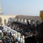 Card. Becciu: i martiri algerini aprono la strada dell'Amore