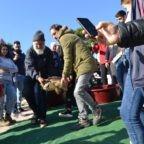 Tre tartarughe tornano in mare: anche la 'Caretta caretta' Biagio