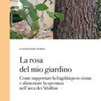 Prof. Borri: a tre anni dal sisma 'la rosa del giardino' non è fiorita
