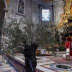 La Pasqua 2020 con Papa Francesco. L'offerta della Fraternità di San Bonifacio del Monastero Valledacqua a Acquasanta Terme. Opuscolo CEI
