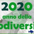 Papa Francesco: la biodiversità valorizza la vita