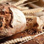 XVIII Domenica: Gesù Eucaristia, ecco il vero pane del cielo!